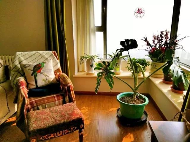 阳台装修怎么打造成休闲区